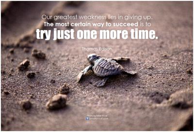 Цитат от Томас Едисон