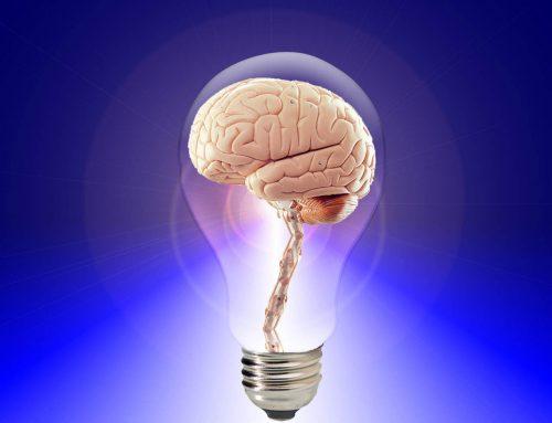 Използвате ли правилно мозъка си?